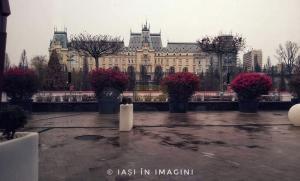 Palatul Culturii, Iasi (31)