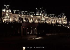 Palatul Culturii, Iasi (67)