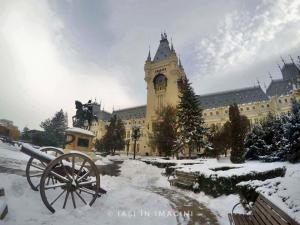 Palatul Culturii, Iasi (4)